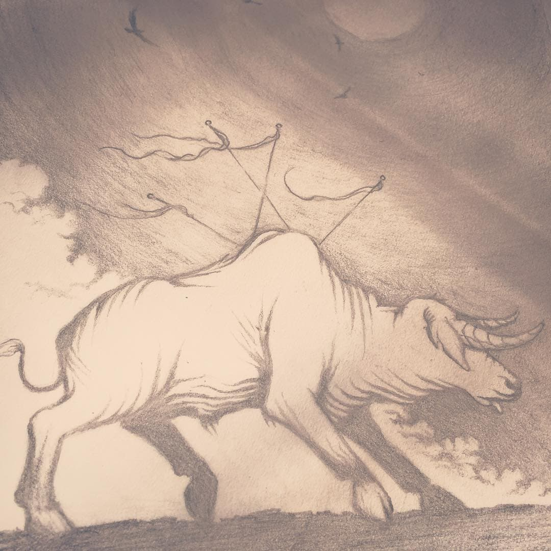 Graphite drawing of a bull that has 4 flags stuck in his back