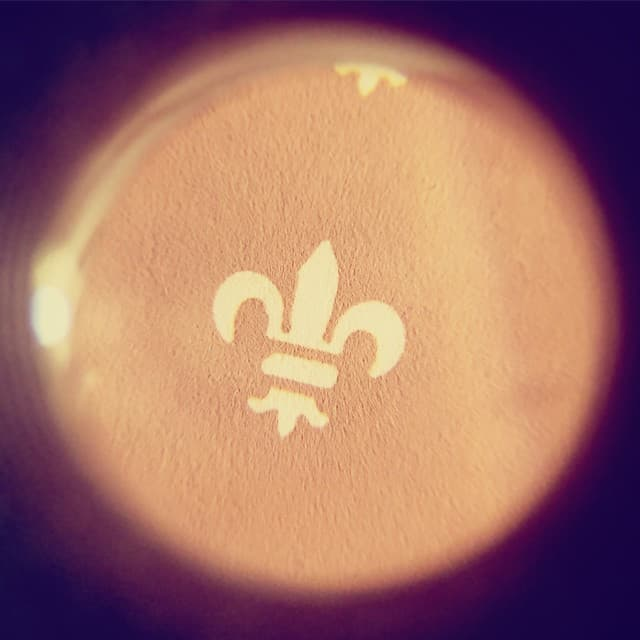 Tiny screen printed fleur de lis magnified under a loupe